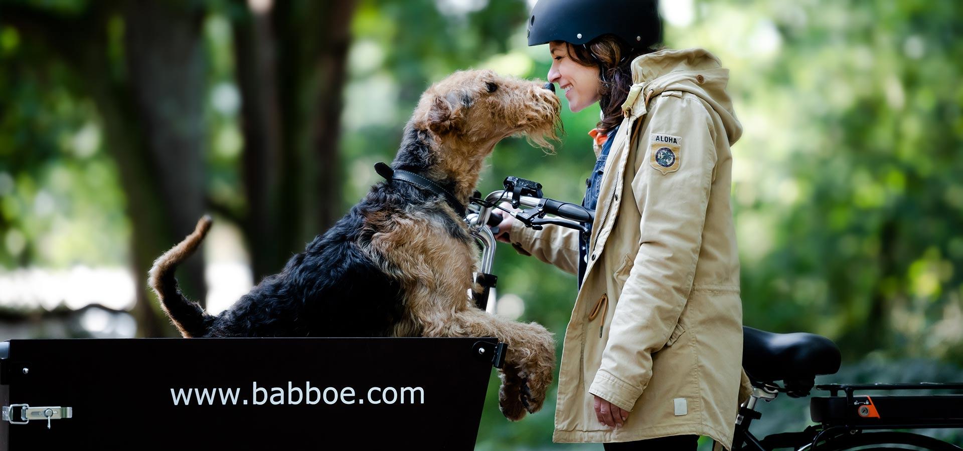 Triporteur chien Babboe Dog