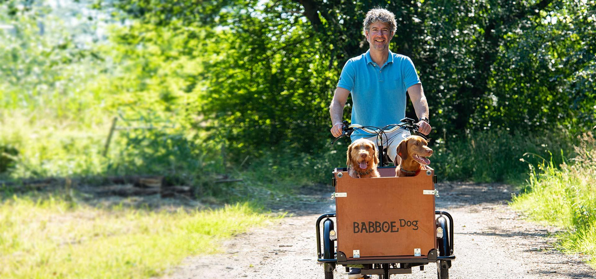 Babboe Dog triporteur chien
