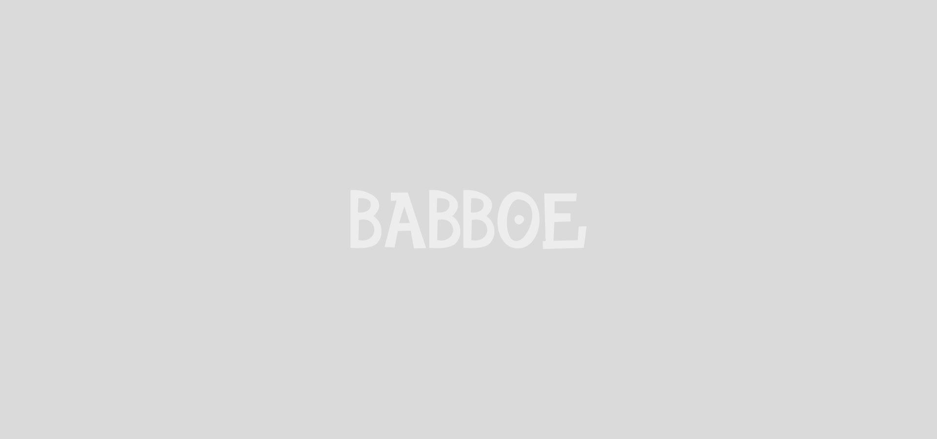 Babboe Flow